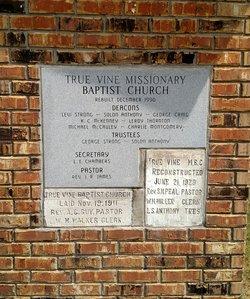 True Vine Missionary Baptist Church Cemetery