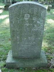 Philip D Lauman