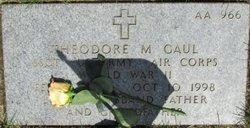 Theodore M Gaul