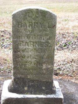 Harry Elwood Barnes