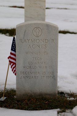 Raymond R Agnes