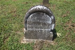 Mary S. Wilkins