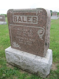 William W Bales