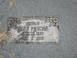 Anna <I>Zoubek</I> Prucha
