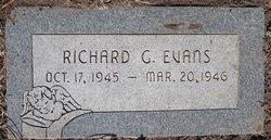 Richard G Evans