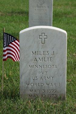 Miles J Amlie