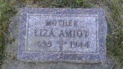 Liza <I>Corbin</I> Amiot