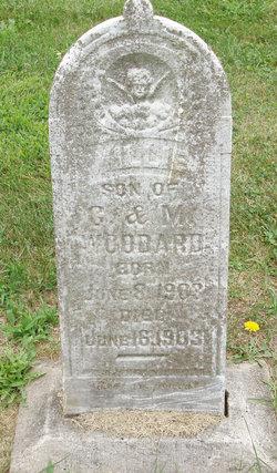 Willie Woodard