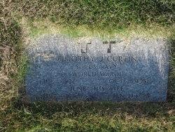 Timothy J Curtin