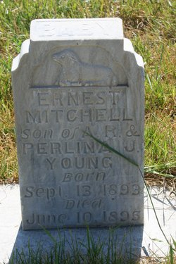Ernest Mitchell Young