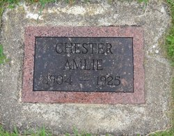 Chester Theodore Amlie