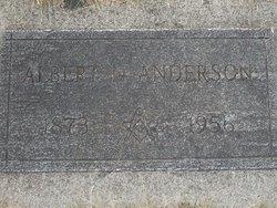 Albert N Anderson