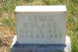 Lydia Noland