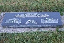 Ephraim Wells Nielson