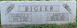 James A Bigler