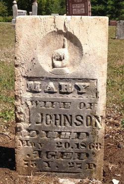 """Mary F. """"Polly"""" <I>Wheeler</I> Johnson"""