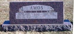 Mary Ann <I>Raleigh</I> Amos
