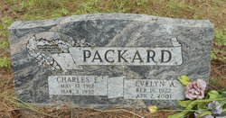 Evelyn A <I>Coldsnow</I> Packard