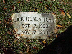 Alice Ulala Tomlin