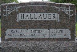 Carl August Hallauer