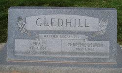 Roy J Gledhill