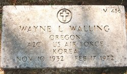 Dr Wayne Lee Walling