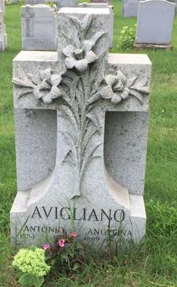Angelina Avigliano
