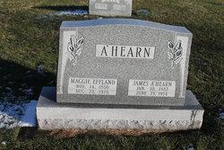 James A'Hearn