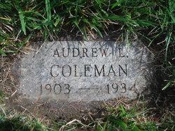 Audrew Lionel Coleman