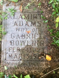 Alaminta <I>Adams</I> Bowling