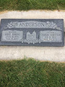 Alice Primrose <I>Jenkins</I> Anderson