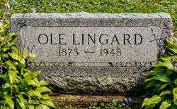 Ole Lingard