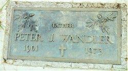 Peter J Wandler