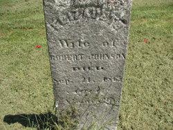 Mary Elizabeth Betsy <I>Lewis</I> Johnson