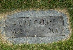A Gay Califf