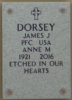 Anne M Dorsey