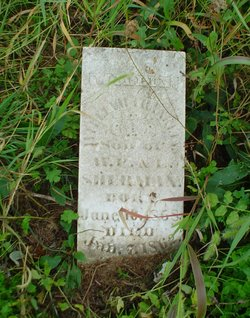 William Franklin Sherman