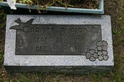 Bruce Alan Bird