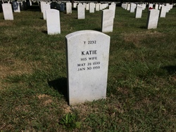 Katie Fee