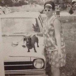 Dachshundlady1967