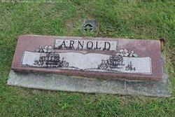 Nellie Lavina <I>Rudicel</I> Arnold
