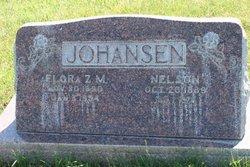 Nelson Johansen
