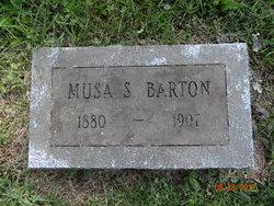 Musa <I>Stocking</I> Barton