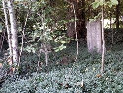 Phillips Family Cemetery