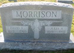 David F Morrison