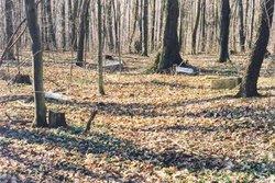 Old Association Burying Ground
