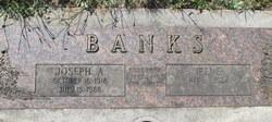 Irene Lorraine <I>Kolski</I> Banks