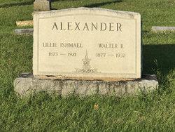 Walter Reynolds Alexander