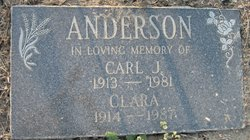 Carl J. Anderson
