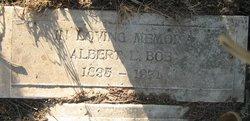 Albert L. Boe